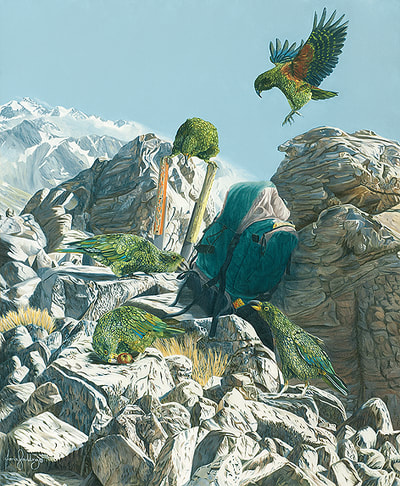 Original image size: 460 x 380mm. The Circus focuses on the decline of the kea not helped by it's inquisitive nature and human interaction.